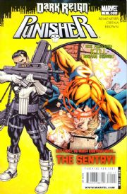 Punisher Comics (2009 Series)